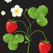 Beautiful strawberries. vector illustration of a realistic — Stock Vector