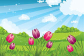 Floral meadow. with bunch of Tulips — Vector de stock