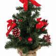 Tree christmas — Stock Photo