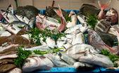 Balık pazarı seçimi — Stok fotoğraf