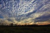 Autumn sky — Stock Photo