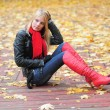 Young beautiful girl in autumn background — Stok fotoğraf