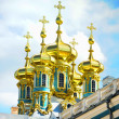 Golden cupola of Pushkin — Stock Photo