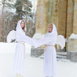 Two white angels — Stock Photo #4571265