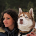Girl with Husky — Stock Photo