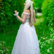 White queen — Foto Stock #4835253
