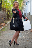 The beautiful young girl with a shopping bags — Stock Photo