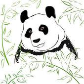 Panda bear. Vector Illustration — Stock Vector