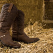 Boots and hay - Stock Photo