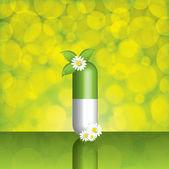 Natural herbal pill — Vetor de Stock