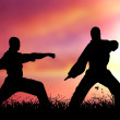 Mixed Martial Artists — Stock Photo