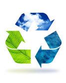 生态系统 — 图库照片