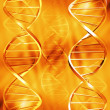 DNA abstract — Stock Photo #4385390