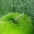 Apple splash - Photo