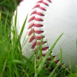 High contrast baseball in long grass - Stok fotoraf