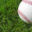 High contrast baseball in long grass - Stock Photo
