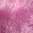 Fake fur texture — Stock Photo
