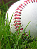 High contrast baseball in long grass — Stok fotoğraf