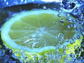 Bubbly lemon — Stock Photo