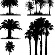 Royalty-Free Stock Photo: Tropical tree silhouettes