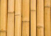 Closed up bamboo background — Stock Photo