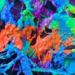 Colorful wax — Stock Photo #4338154