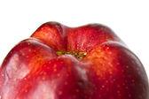 Red apple. macro — Stock Photo