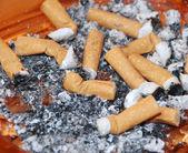Cigarettes stubs — Stock Photo