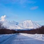 Snow road — Stock Photo #5265720
