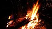 Bonfire at night — Stock Photo