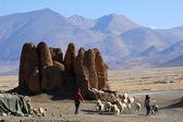 Tibet'te manzara — Stok fotoğraf