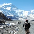 Foto Stock: Mount Everest