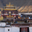 Landmarks of a Tibetan lamasery — Stock Photo