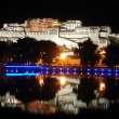 Night scenes of Potala Palace - Stock Photo