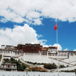 potala palace in lhasa tibet — Stock Photo