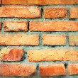 Old wall — Stock Photo #5359410