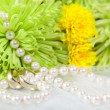 Wedding rings and bouquet of chrysanthemums — Stock Photo