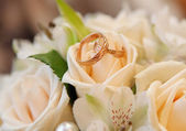 Wedding rings — Fotografia Stock