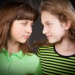Stock Photo: Portrait of two young beautiful girls