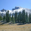 Stock Photo: Wheeler Peak
