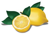 Limón biológico — Vector de stock
