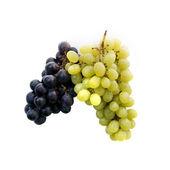 Red grape and white grape — Stock Photo