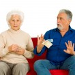 Elderly couple on the couch with money in hand — Stock Photo #5005625