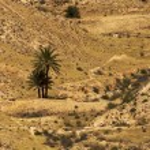 Desert 2 — Stock Photo