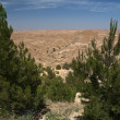Stock Photo: Desert view 3