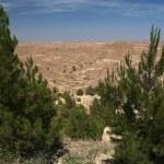 Desert view 3 — Stock Photo