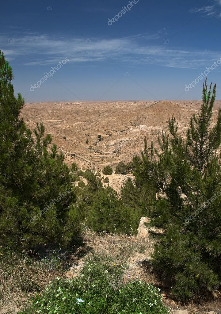 Desert view, Tunisia — Stock Photo #4561479