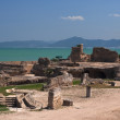 Ruins of Carthage, Tunisia — Stock Photo #4590700