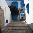 Architecture of Sidi-Bou-Said 3 — Stock Photo