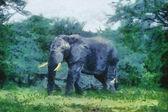 Bush Basher (Elephant) — Stock Photo